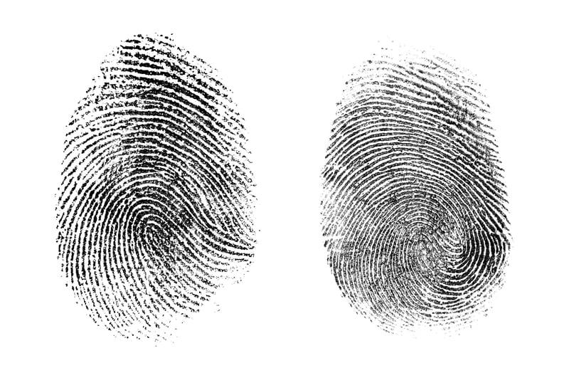 What Is Biometric Identification